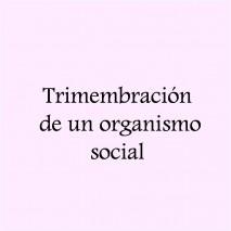 Trimembración de un Organismo Social
